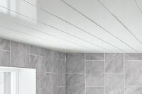 hygiene wall ceiling aqua cladding