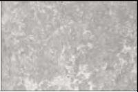 250mm Concrete Grey (Matt)
