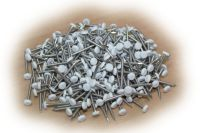 30mm Polypins (white)